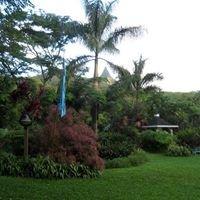 Olomana Gardens in Waimanalo