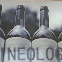Wineology Fine Wine & Spirits
