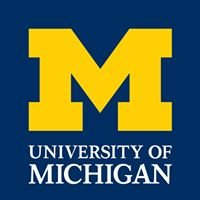 University of Michigan Youth and Social Issues Program (YSI)