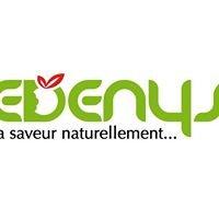 SAS Edenys