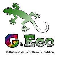 G.Eco