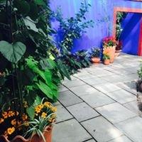 Frida Kahlo Art Garden Life Exhibition