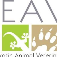 Avian & Exotic Animal Veterinary Services at Memphis Veterinary Specialists