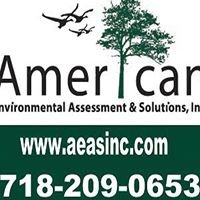 American Environmental Assessment & Solutions, Inc
