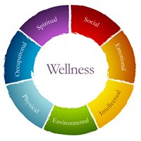 University of Utah School of Medicine Wellness Program
