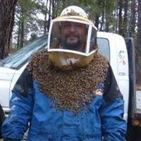 Dan's Honey Co.