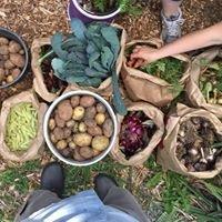 Beech Street Community Garden