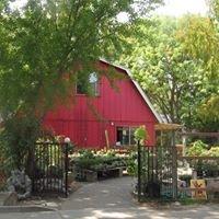 Redwood Barn Nursery