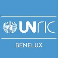 Regionaal Informatiecentrum VN