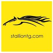 Stallion Transportation Group