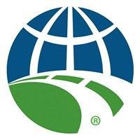 International Road Federation