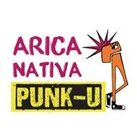 Festival Internacional de Cine Arica Nativa