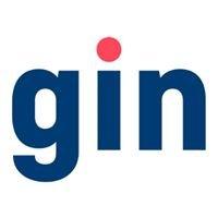 GIN - Grupo de Iniciativa Nacional por los Derechos del Niño