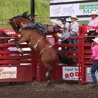 Crystal Springs Rodeo