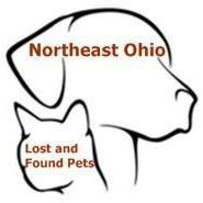 Northeast Ohio Lost and Found Pets