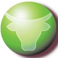 Green Ox Energy