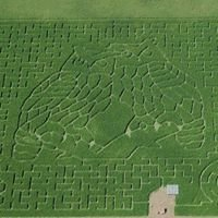 Heartland Country Corn Maze