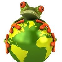 WebieFrog Web Design and Hosting