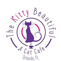 The Kitty Beautiful: A Cat Cafe  - Downtown Orlando