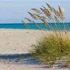 Land and Sea Native Plants, LLC