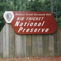 Big Thicket National Preserve, Texas