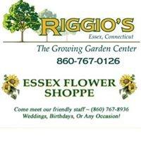 Riggio's Garden Center