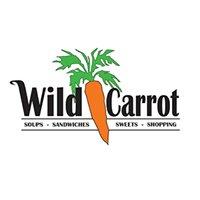 Wild Carrot