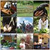 Peaceful River Farm and Lee's Healthy Cooking Classes