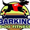 Barking Dog Fitness