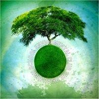 Ukiah High School Environmental Club
