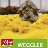 1A Garten Weggler