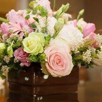Bellevue Florist of Newport