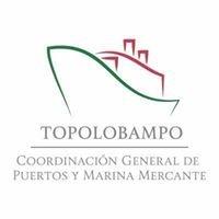 Api Topolobampo