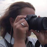 Segelsportbilder