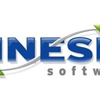 Kinesix Software