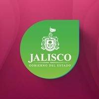 IJALDEM - Instituto Jalisciense del Emprendedor