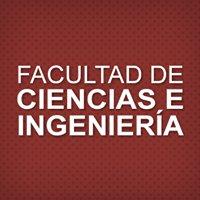 FACULTAD DE CIENCIAS E INGENIERIA PUCP