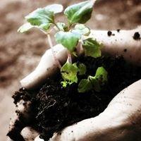 OSU-OKC Agriculture Technologies