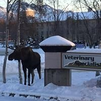 Veterinary Specialists of Alaska PC