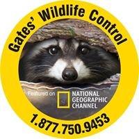 Gates' Wildlife Control