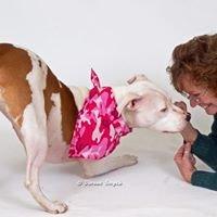 Your Pet aDORed Portrait Studio & Pet Services