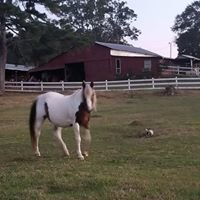 Idyll Acres Rescue Ranch