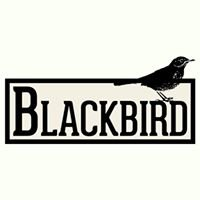 Blackbird Derry