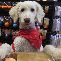 Bone-A-Fide Pet Boutique