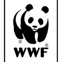 WWF India, Lodhi Road
