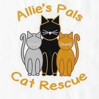 Allie's Pals Cat Rescue