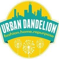 Urban Dandelion