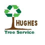 Terry Hughes Tree Service