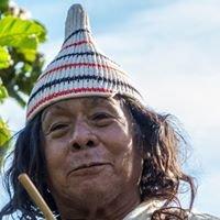 Kalashe - Urwaldkaffee - Feinster Kaffee mit Sinn