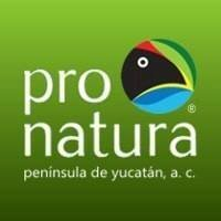 Pronatura Península de Yucatán, A.C
